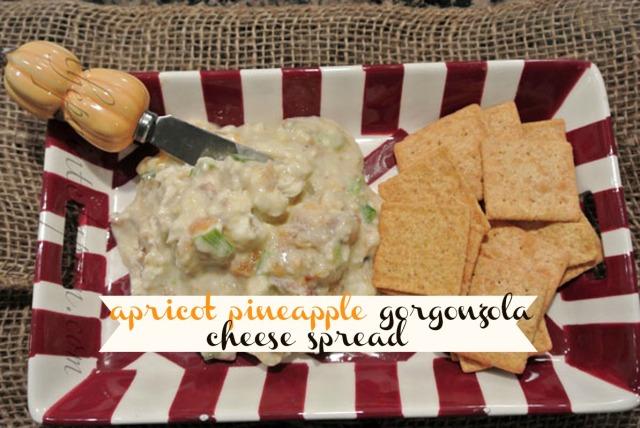apricot gorgonzola spread thepaintedapron.com