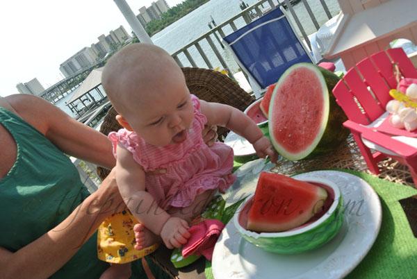 CC & watermelon thepaintedapron.com