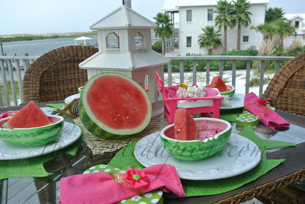 watermelons and flipflops thepaintedapron.com