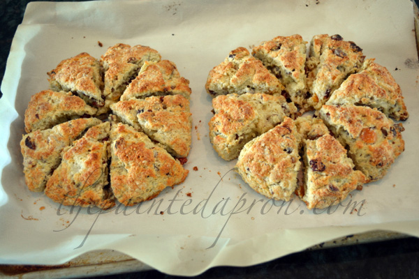 fruit and nut scones thepaintedapron.com