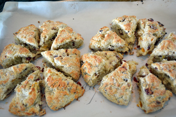 scones with apricot, cranberry and pecans thepaintedapron.com