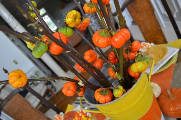 pumpkin plants thepaintedapron.com