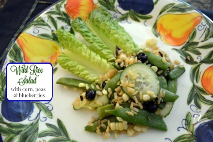 wild rice salad with blueberries and vegetables