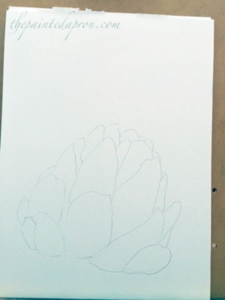 artichoke sketch
