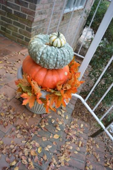 pumpkins-leaves