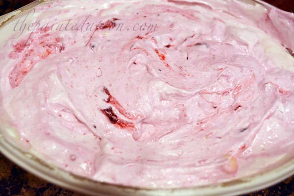 cranberry-ice-cream-with-white-chocolate