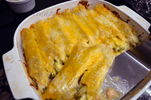 cheesy-short-cut-manicotti