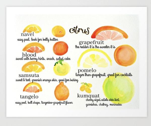 citrus-print