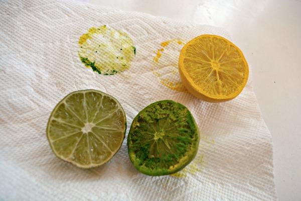 citrus-stamps
