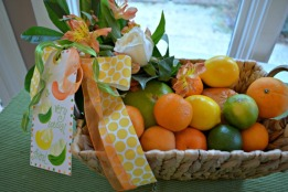 citrus basket