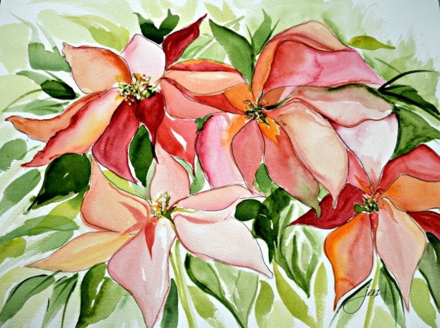 pink poinsettias 1